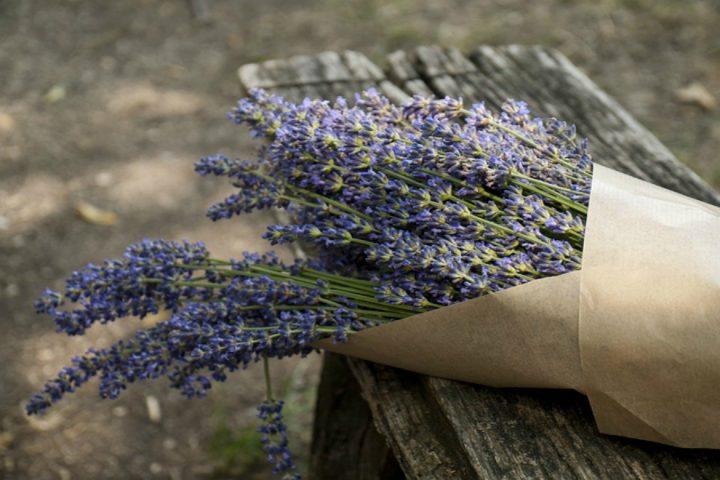 Διώξτε τις άσχημες μυρωδιές στο σπίτι με 6 τρόπους