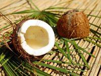 Γιατί στο survivor τρώνε καρύδα; Ιδιότητες & οφέλη στην υγεία