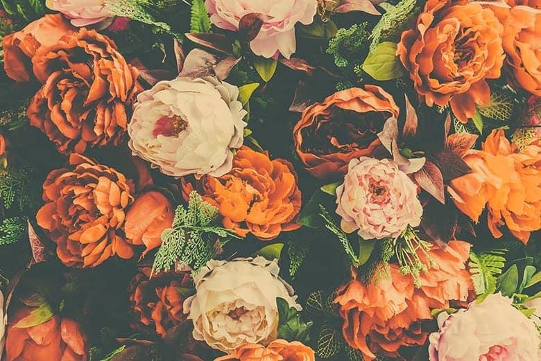 ταπετσαρία με λουλούδια σε πορτοκαλί χρώματα