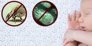 Βιολογικός Καθαρισμός Στρώματος – 4 Συχνές Απορίες