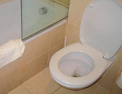 5 τρόποι για να καθαρίσουμε το πουρί στην τουαλέτα μια και καλή