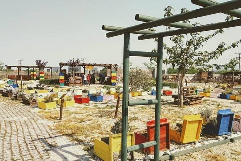 Anel Honey Park Παιδικό Πάρτυ