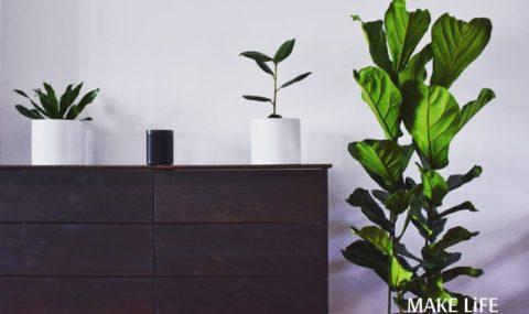 Φυσικό καθαριστικό για ξύλινα έπιπλα & tips για την περιποίησή τους