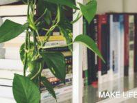 Ιδέες για αποθήκευση βιβλίων και πως να διακοσμήσεις τα ράφια σου